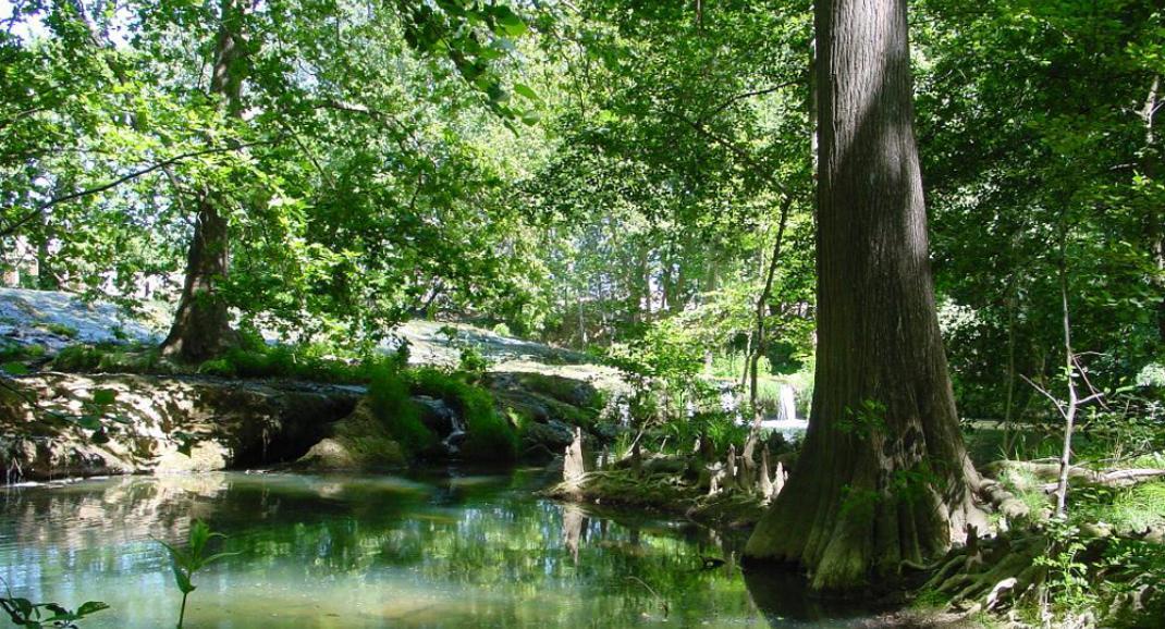 La réserve naturelle du Lez